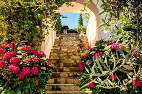 How to Create Your Own Mediterranean Styled Garden at Home - Untitled design 44